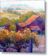 Barn Vineyard Metal Print