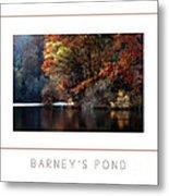 Barney's Pond Poster Metal Print