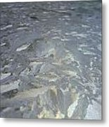 Baroque Ice Metal Print by Jaime Neo