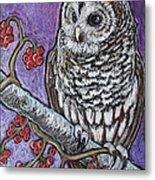 Barred Owl And Berries Metal Print