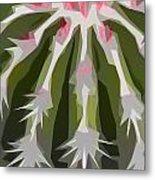 Barrel Cactus Collage Metal Print