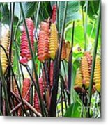 Barrils Flower Metal Print
