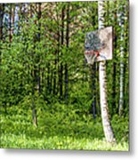 Basketball Forest Court Metal Print