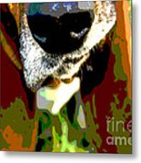 Basset Hound -all Nose And Ears2 Metal Print