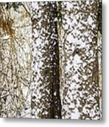 Battered By Winter Blizzard Metal Print