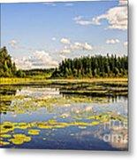 Bay At The Waskesiu Lake With Lily Metal Print