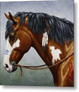 Bay Native American War Horse Metal Print by Crista Forest