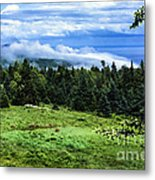 Bay Of Fundy From Fundy National Park Metal Print
