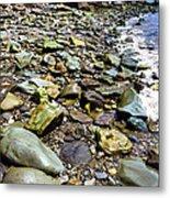 Bay Of Fundy Shoreline Metal Print