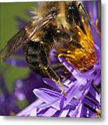 Be My Bee... Metal Print