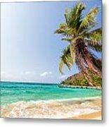 Beach And Palm Tree Metal Print