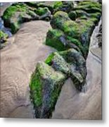 Beach At Cape Kiwanda Metal Print