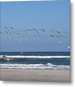Beach Birds In Flight Metal Print