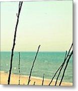 Beach Branches Metal Print