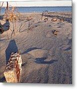 Beach Brick Metal Print