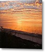 Beach Buds Metal Print