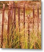 Beach Dune Fence At Cape May Nj Metal Print