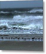 Beach Feast - Outer Banks Ocracoke Metal Print by Dan Carmichael