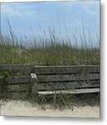 Beach Grass And Bench  Metal Print by Cathy Lindsey