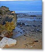 Beach Landing Metal Print