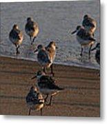 Beach Meeting Metal Print
