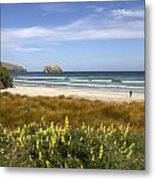 Beach Scene Otago Peninsula South Island New Zealand Metal Print