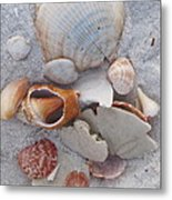 Beach Treasures 2 Metal Print