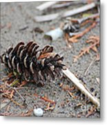 Beach Treasures Metal Print