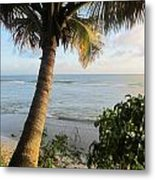 Beach Under The Palm 4 Metal Print
