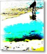 Beachcomber Metal Print by Brian D Meredith