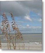 Beachview With Seaoat  Metal Print