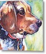 Beagle Dog Metal Print
