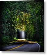 Beam Me Up Great Smoky Mountains Tennessee Mountains Art Metal Print