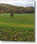 Beantown Meadow Metal Print