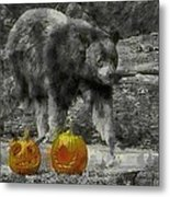 Bear And Pumpkins Metal Print