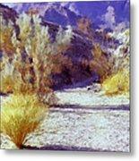Bear Creek Trail II Metal Print