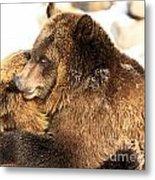 Bear Hug Metal Print