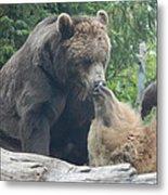 Bear Kisses Metal Print