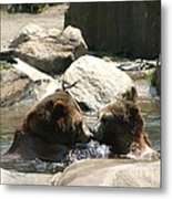Bear Smooches Metal Print