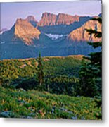 Bear Valley Glacier National Park Metal Print