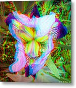 Bearded Iris Cultivar - Use Red-cyan 3d Glasses Metal Print