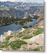 Beartooth Wildflowers Metal Print