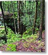 Beartown Rocks State Park Metal Print