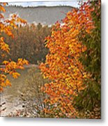 Beautiful Autumn Gold Art Prints Metal Print