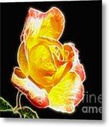Beautiful Blooming Yellow Rose Metal Print