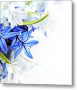 Beautiful Blue White Flower Metal Print