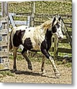 Beautiful Boy Metal Print