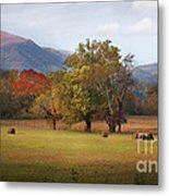Beautiful Cades Cove Metal Print by Lena Auxier