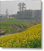 Beautiful China's Rural Scenery Metal Print