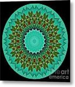 Beautiful Circle Metal Print